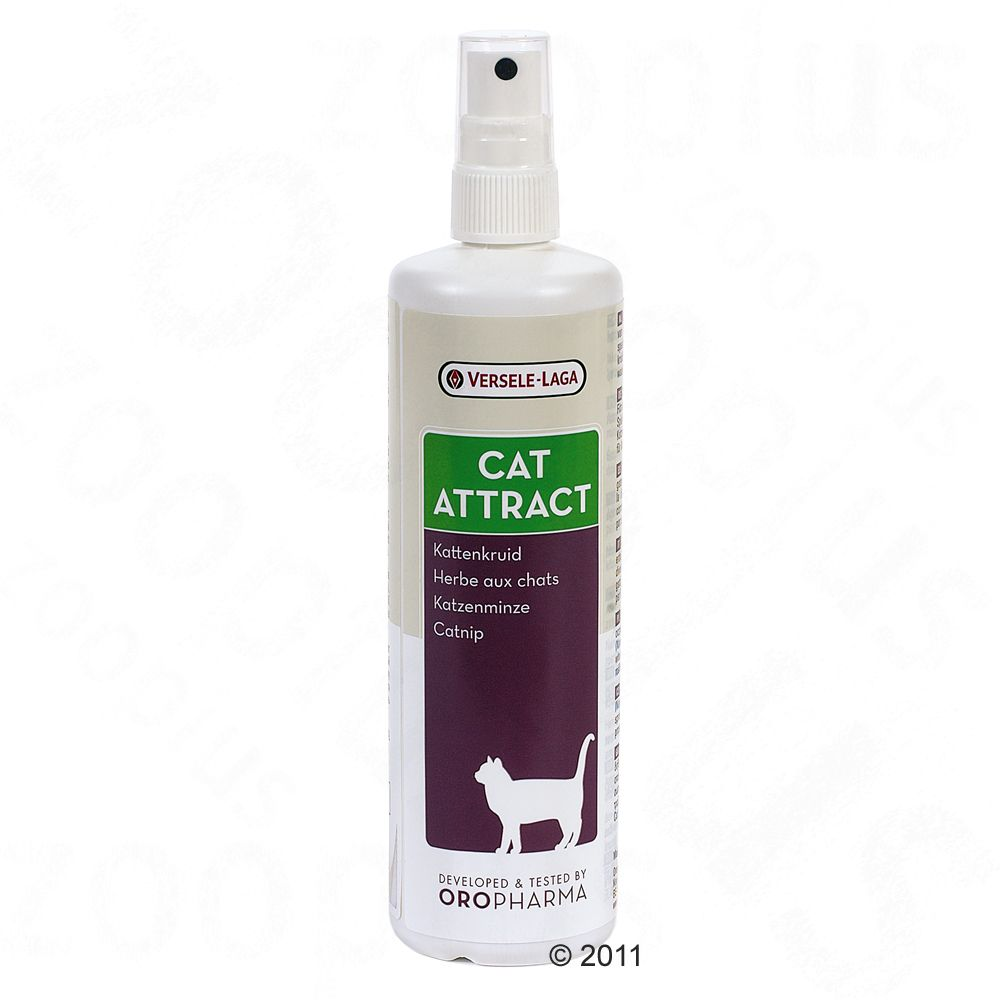Oropharma Cat Attract Catnip Spray from Versele-Laga is a natural extract from catnip (Nepeta cataria)