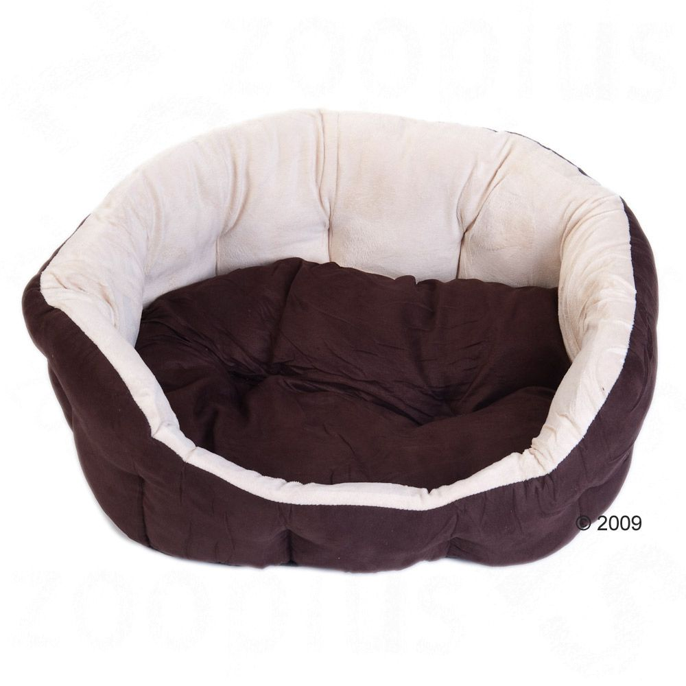 The Dog Bed Cozy Bruno has a thick high edge to really relax