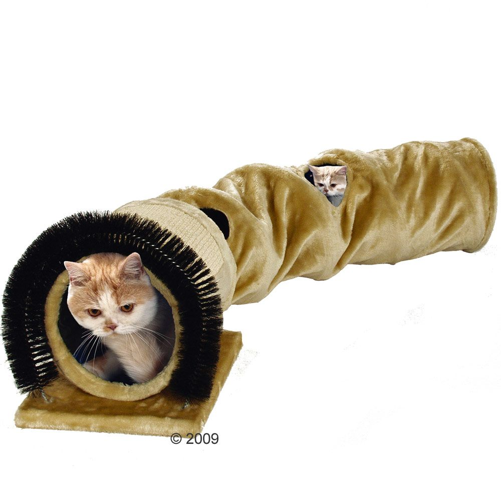 This cat tunnel will soon be your cat