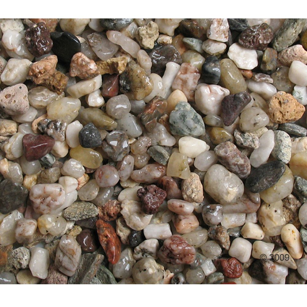 Light gravel is a neutral substrate which highlights darker background and decorations in your aquarium