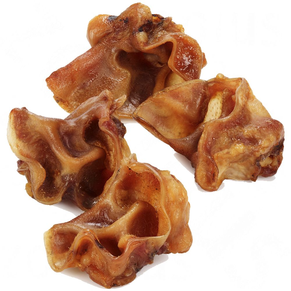 Pig Ear Auricles are a yummy dried dog snack that makes the ideal treat between meals