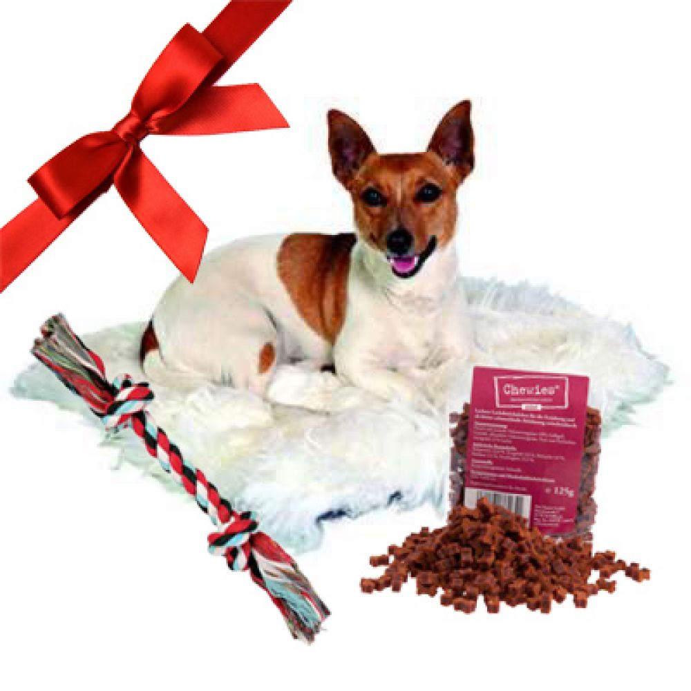 Pet Gift Set - Let your dog wallow in the soft luxury