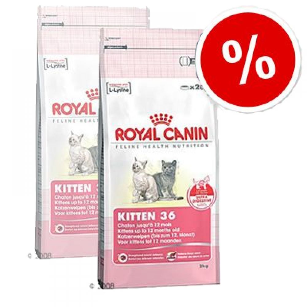 Highly nutritious cat food Royal Canin Kitten 36 is ideal for mother cats while pregnant or nursing as wells as kittens from 4 to 12 months old
