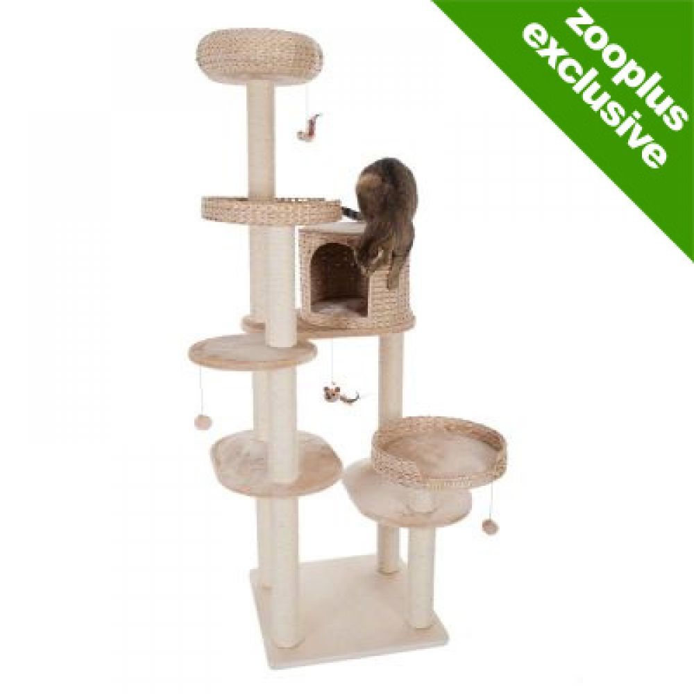 The Natural Home IV cat tree has lots of different places where your cat can play or hide away