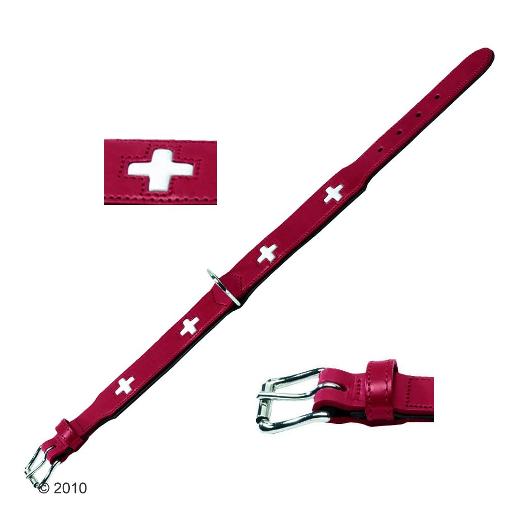 With this intricate collar round his or her neck your dog can be assured of having a unique appearance