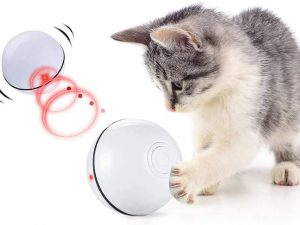 Smart Interactive Toy Ball For Cats