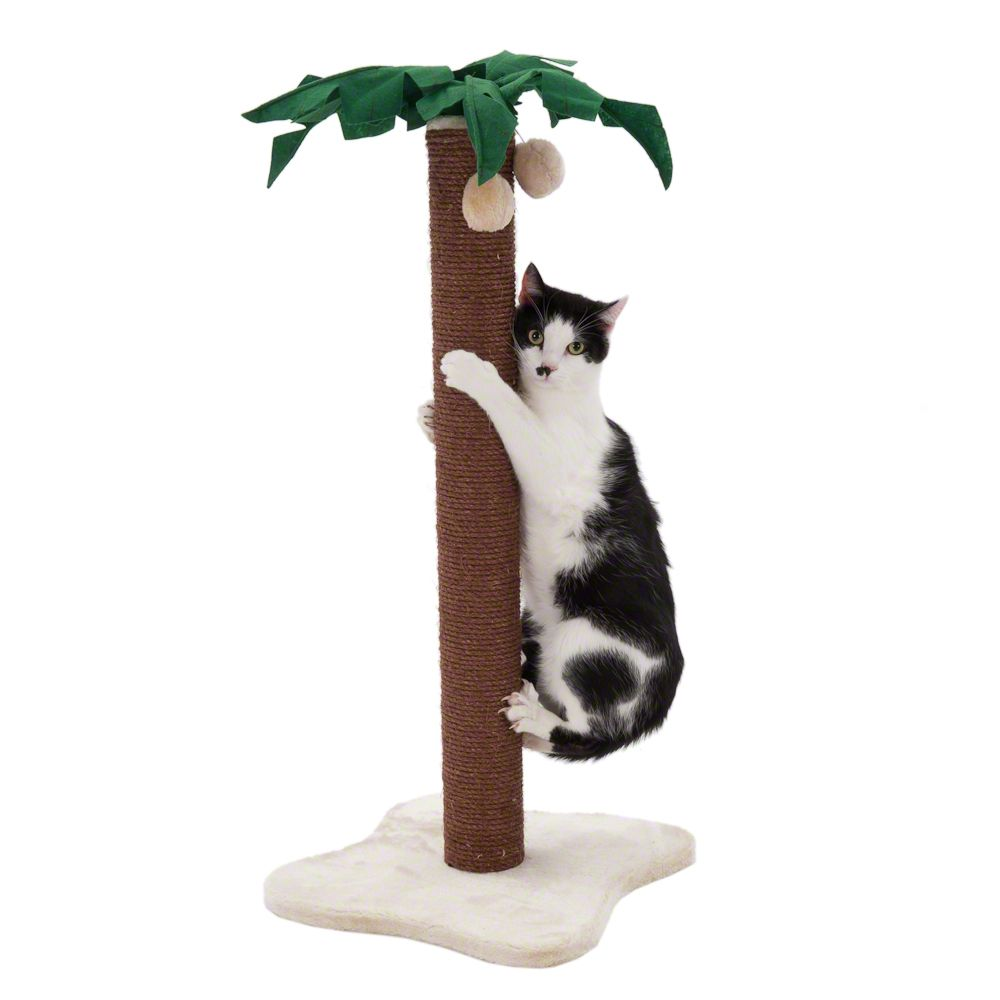Add a touch of tropical island atmosphere to your home with this charming palm tree scratching post