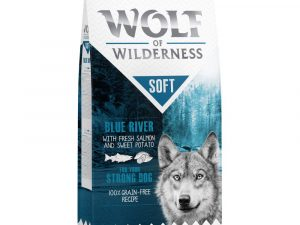 1kg Adult Salmon Soft Wolf of Wilderness Dry Dog Food