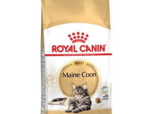 2x10kg Norwegian Forest Cat Royal Canin Economy Dry Cat Food