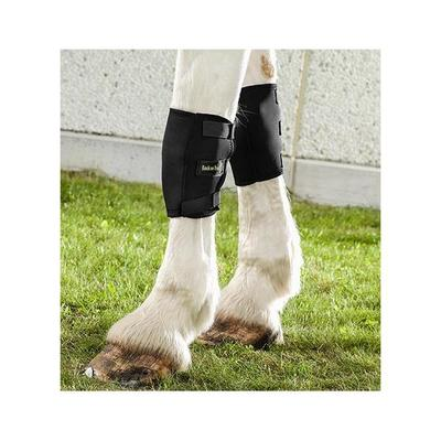 Back On Track Welltex Equine / Horse Knee Boots - Knee Boot