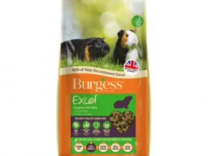 Burgess Excel Nuggets with Mint Guinea Pig Food 10kg x 2