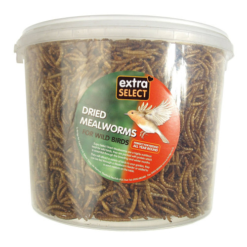 Extra Select Mealworms for Wild Birds 5 Litres