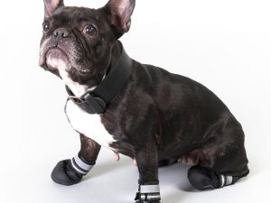 Large Sports & Protective Dog Boots - Set of 4