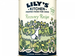 Lilys Kitchen Recovery Recipe Dog Food 400g x 24