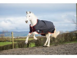 Mackey EquiSential Standard Neck Turnout Rug in Navy 6' 6