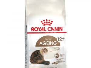 Ageing 12 Royal Canin Dry Cat Food