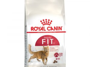 Fit Adult Royal Canin Dry Cat Food