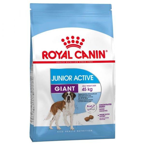 Royal Canin Giant Junior Active Dry Dog Food