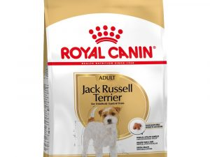 Jack Russell Terrier Adult Royal Canin Dry Dog Food
