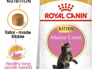 Royal Canin Maine Coon Kitten Dry Cat Food 2kg