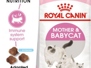 Royal Canin Mother & Babycat Dry Adult & Kitten Food 400g