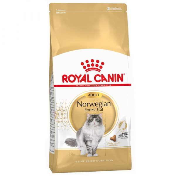Royal Canin Norwegian Forest Dry Cat Food