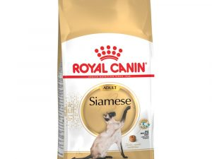 Siamese Adult Royal Canin Dry Cat Food