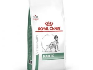 Royal Canin Veterinary Diabetic DS 37 Dog Food 12kg x 2