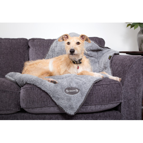 Scruffs Cosy Dog Bed Cosy Blanket