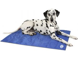 Scruffs Self Cooling Mat Dog Bed Extra Large