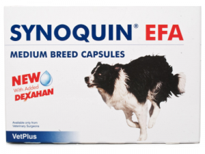 Synoquin EFA Joint Supplement Medium Breed Capsules x 30