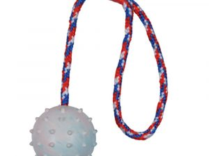 Trixie Rubber Throwing Ball Dog Toy