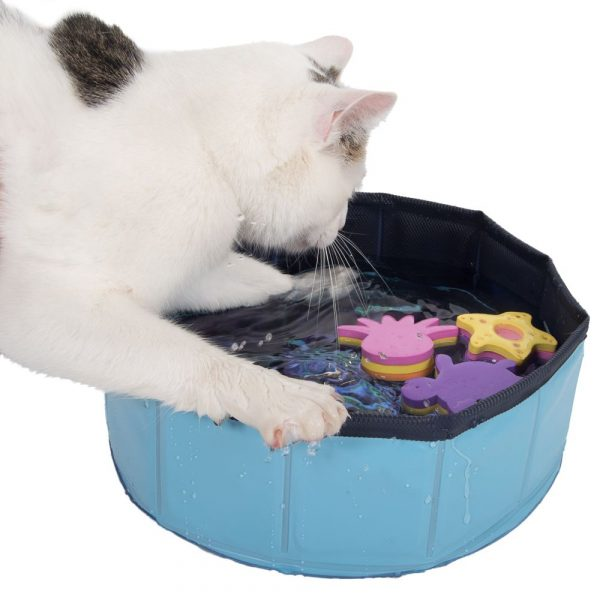 zooplus Exclusive Kitty Pool Cat Toy with Floating Toys